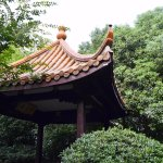 Longquan Mountain - park