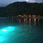 Foto de Rhythms of the Night by Vallarta Adventures