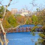 Southern route & view on Austin Hike and Bike Trail Oct 2005 via Zilker Pedestrian Bridge.