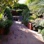 terraça e jardim de ervas