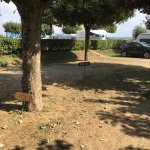 Photo de Camping La Grappe d'Or
