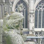 Sint Janskathedraal (St.-Johannes-Kathedrale) Foto