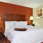 Hampton Inn Exmore King guest room
