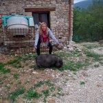 Martina the mal-adjusted guard pig