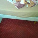 Photo of Hotel Camelia International