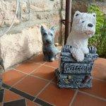 Acorn Guest House Foto