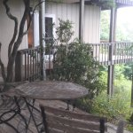 Deck around Laurel Tree house
