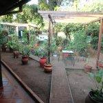 Jardín interno