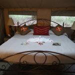 Tent in Nairobi Tented Camp
