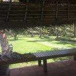 Coconut Lagoon Foto