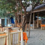 Photo of Warung Paradiso
