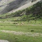 Valle Monte Perdido