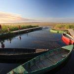 Terres de l'Ebre - Ponton d'embarquement à la llacuna del Garxal -Photo par Mariano Cebolla