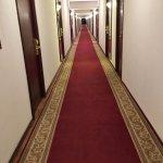 Hotel Angara Foto