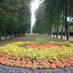 Foto de Orangerie