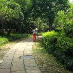 Fayun Pathway