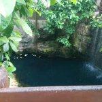 IMG_20160915_163810_large.jpg