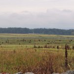 The view from the Union line for Pickett's Charge