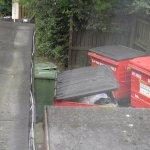 More backyard bins