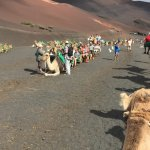 Heading off on camel ride