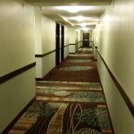 Comfort Inn and Executive Suites Foto