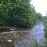 Stream at Glendalough