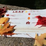 Get your leaf guide to explore the 12-acre estate before or after your tour!