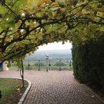 Schloss Johannisberg Foto