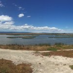 Palo Alto Baylands Hiking Trail