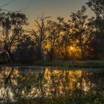 Sunrise at Tiger Wetlands across the road from motel