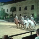 Photo de Espectaculo Pasion y Duende del Caballo Andaluz