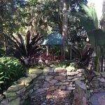 Hilton Garden Inn Tampa East/Brandon Foto