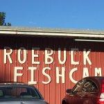 Roebuck Fish Camp