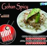 Gohan Spicy