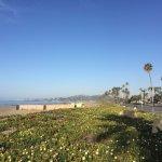 Hyatt is located right on the beach in Santa Barbara