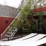 Terrace and sun terrace