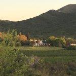 Orange Grove Farm Foto