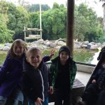 Foto di Hamilton Zoo