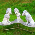 les chiens (de garde)