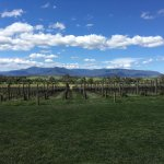 Photo de Vinetrekker Wine and Food Tours