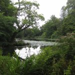 Photo de Swinton Park