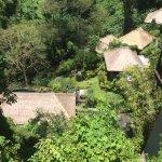 Photo de Maya Ubud Resort & Spa