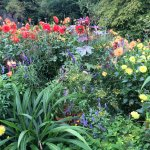 Botanischer Garten - Japan Garten Foto