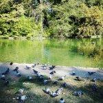 Photo de Parco Ducale