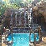 FB_IMG_1474722573187_large.jpg