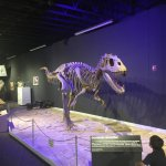 Photo of Mesalands Community College's Dinosaur Museum