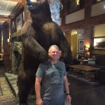 Big bear in lobby
