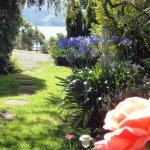 Rosemary Retreat garden and harbour view