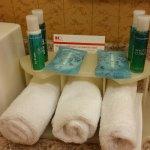 Holiday Inn Express Hotel & Suites Nashville - Opryland Foto