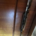Room door is damaged and the hotel doesn't even fix it.